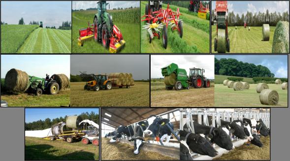 Studi Pertanian Perkebunan Peternakan Di Jerman Wwwalumnieropaorg