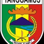 Langkah Persiapan Kuliah ke Jermandari Kota Agung Kabupaten Tanggamus Terkini